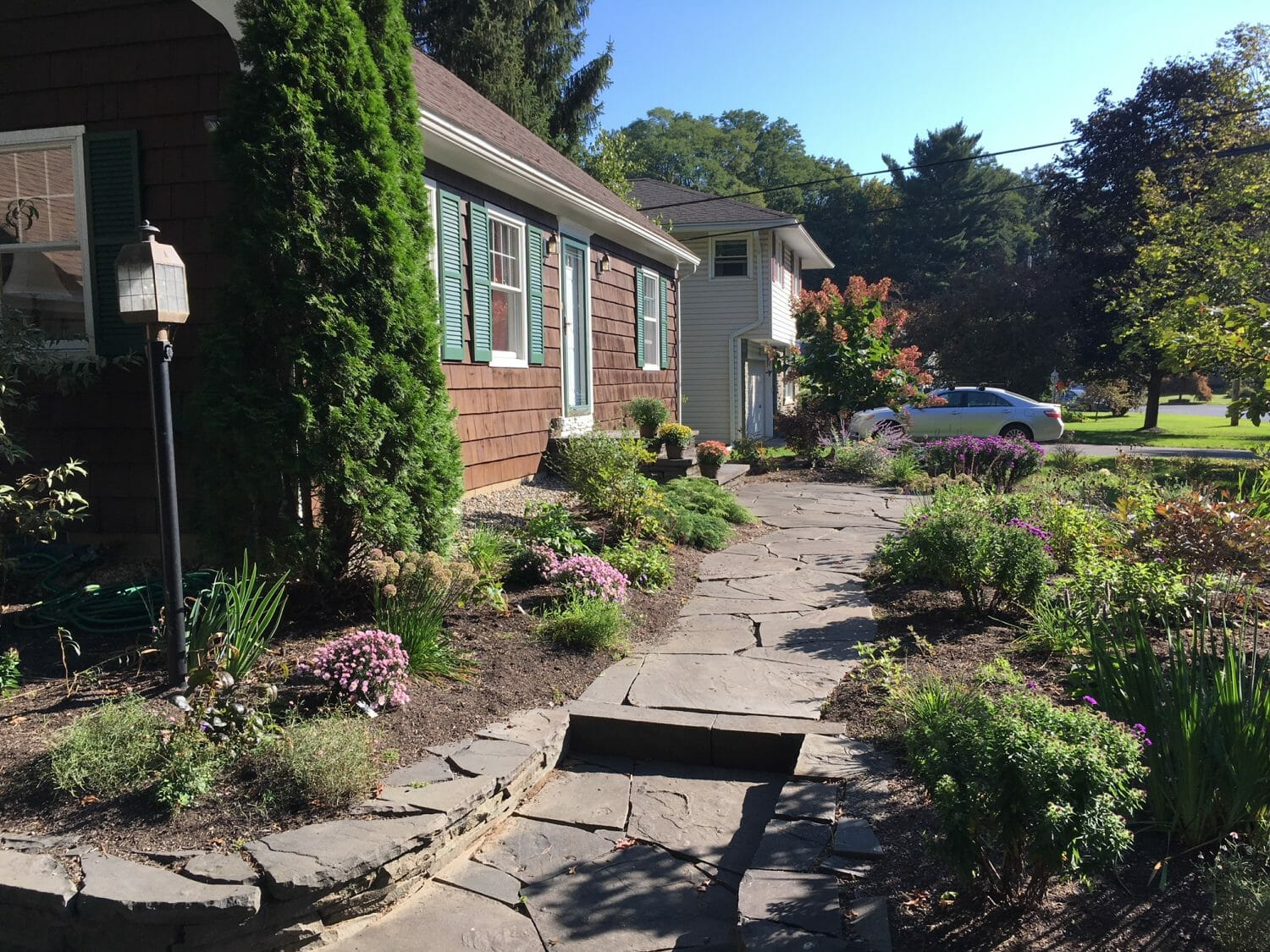 Naturalistic landscape design using native plants in Schenectady County, NY