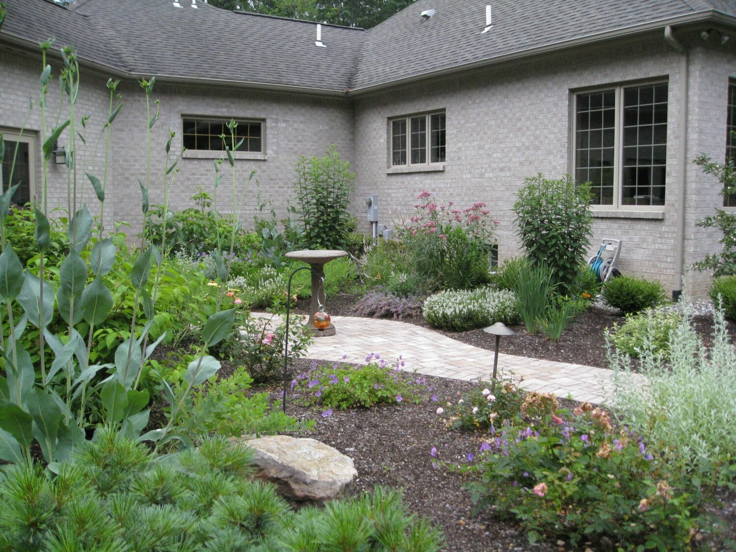 perennial garden for pollinators - Landscape Design and Consulting