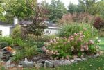Averill Park Crystal Lake NY naturalistic garden design 150x101 - Landscape Design Portfolio Albany's Capital District