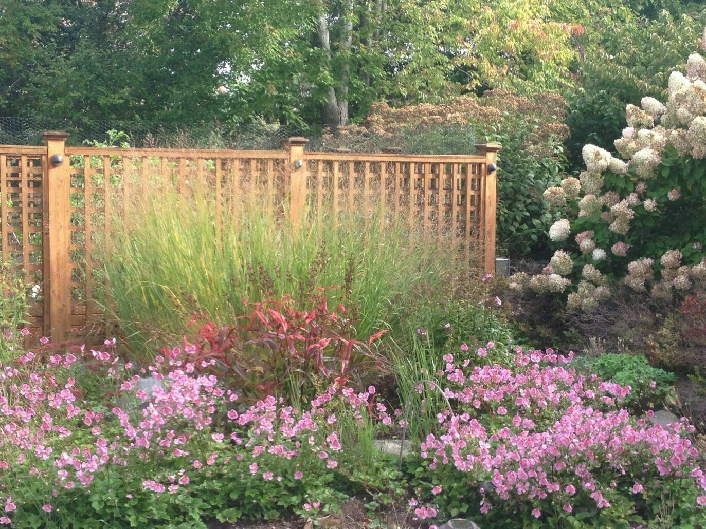 vegetable garden with naturalistic cutting garden