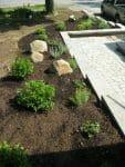 IMG 1350 113x150 - Landscape Design Portfolio Albany's Capital District