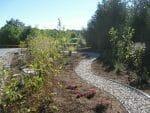 IMG 8943 150x113 - Landscape Design Portfolio Albany's Capital District