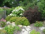Latham NY cedar fence garden design 150x113 - Landscape Design Portfolio Albany's Capital District