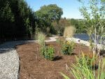 Troy Pittstown NY natural garden designer 150x113 - Landscape Design Portfolio Albany's Capital District