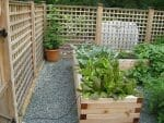 latham albany ny raised beds vegetable garden 150x113 - 2018 Landscape Design Portfolio page
